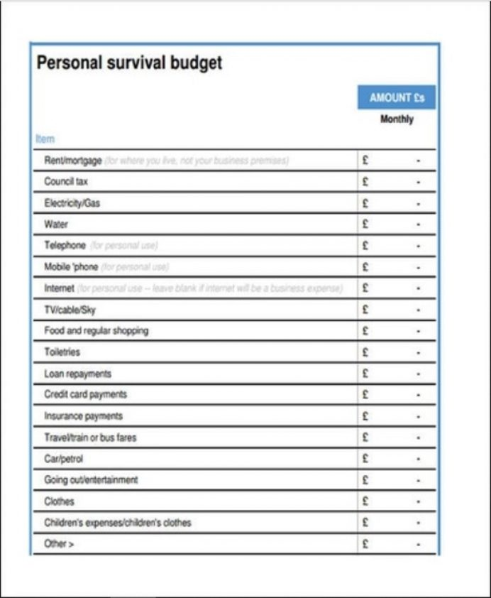 Personal Survival Budget Template Sample Example Budget Personal Budget Template Examples