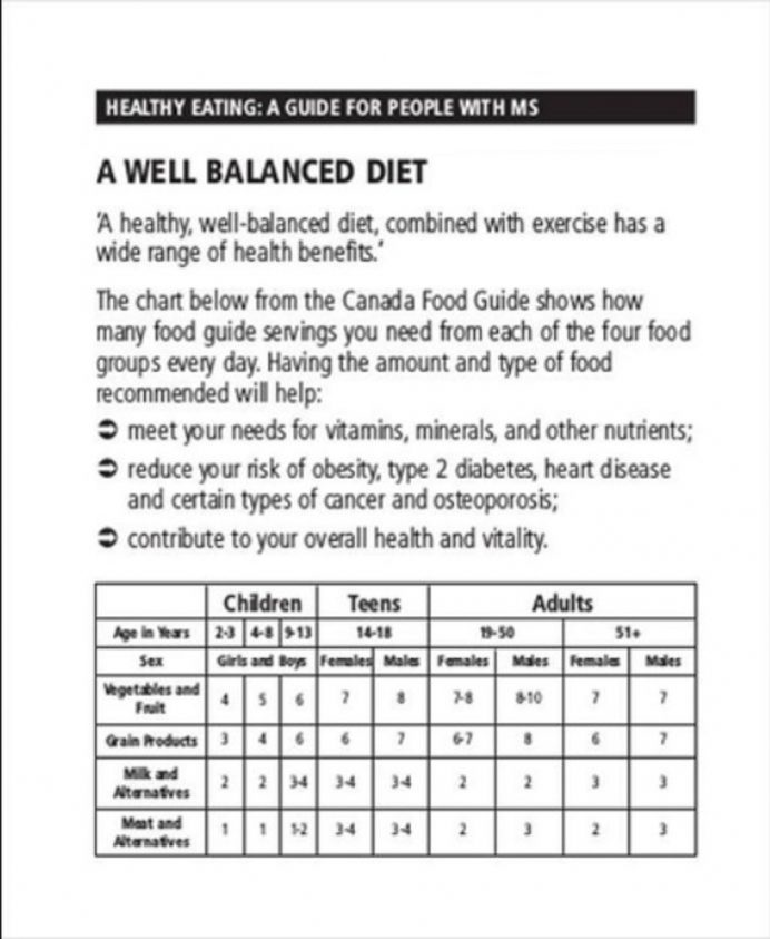 Balanced Diet Chart Template Form Example Sample Meal Plan Food Word Charts Pdf  Samples