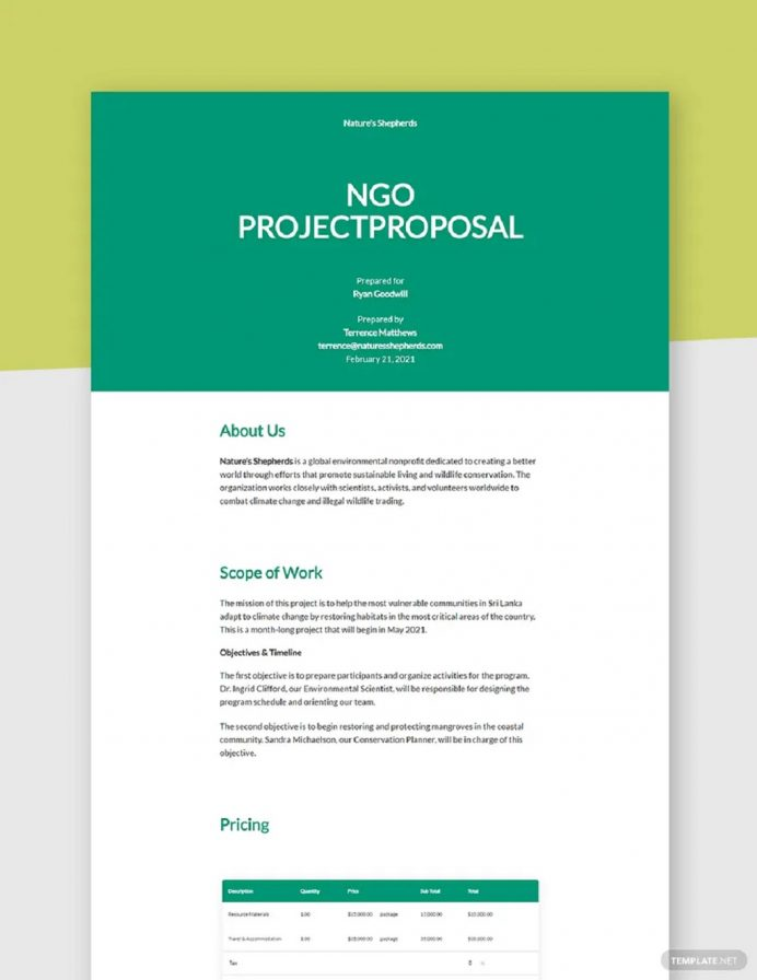 NGO Project Proposal Template Example Sample Proposal Non-Profit Proposal Template Examples