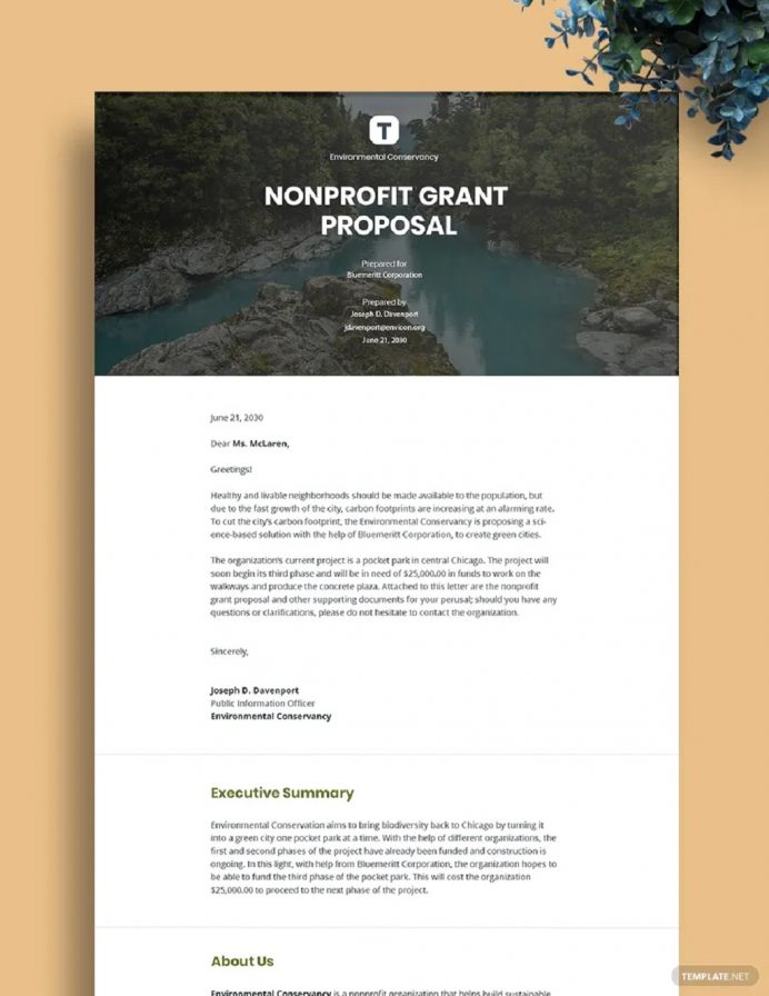 Professional Nonprofit Grant Proposal Template Example Sample Proposal Non-Profit Proposal Template Examples