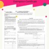 Form S-211: Wisconsin Sales and Use Tax Exemption Certificate